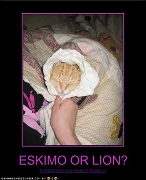ESKIMO OR LION?