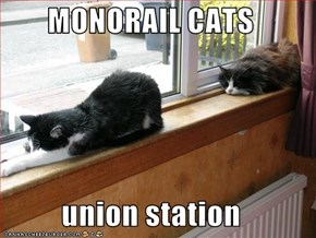 MONORAIL CATS  union station