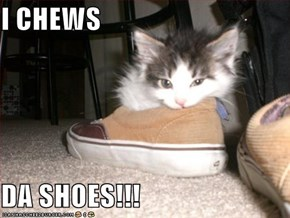 I CHEWS  DA SHOES!!!