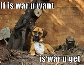 If is war u want  is war u get
