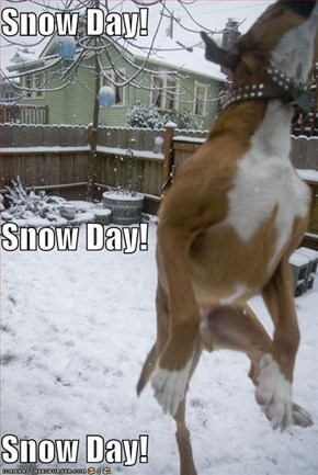 Snow Day! Snow Day! Snow Day!