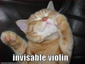 invisable violin