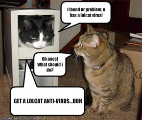 I found ur problem, u has a lolcat virus!