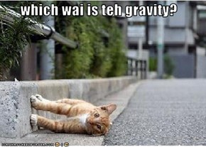 which wai is teh gravity?