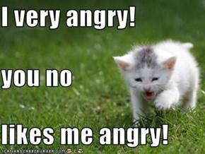 I very angry! you no likes me angry!