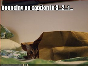 pouncing on caption in 3...2...1...