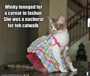Winky lonnged fur a carear in fashun.   She wus a nachural fur teh catwalk.