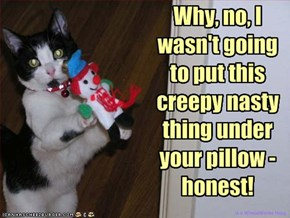 Why, no, I wasn't going to put this creepy nasty thing under your pillow - honest!