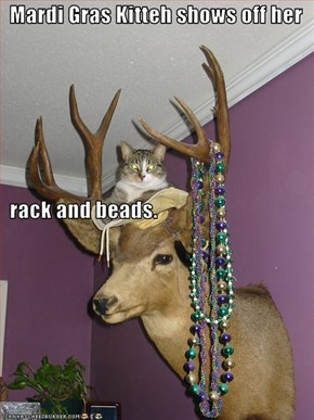 Mardi Gras Kitteh shows off her   rack and beads.