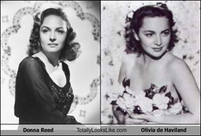 Donna Reed Totally Looks Like Olivia de Haviland
