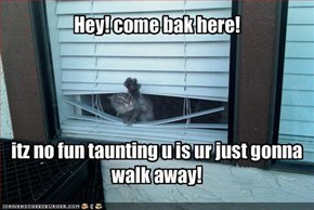 Hey! come bak here!