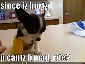 since iz hurtzd  u cantz b mad, rite?