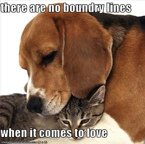 there are no boundry lines  when it comes to love