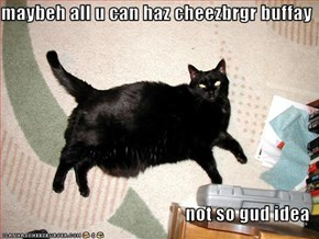 maybeh all u can haz cheezbrgr buffay  not so gud idea