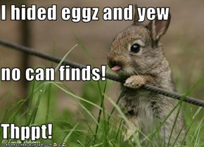 I hided eggz and yew no can finds! Thppt!