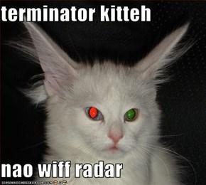 terminator kitteh  nao wiff radar
