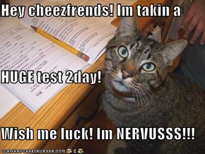 Hey cheezfrends! Im takin a HUGE test 2day! Wish me luck! Im NERVUSSS!!!