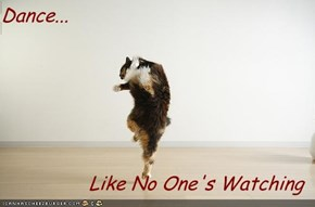 Dance...  Like No One's Watching