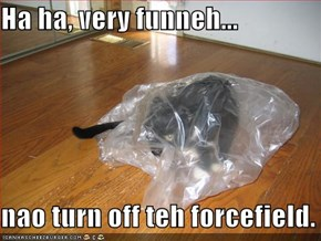 Ha ha, very funneh...  nao turn off teh forcefield.