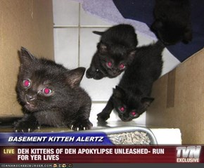 BASEMENT KITTEH ALERTZ - DEH KITTEHS OF DEH APOKYLIPSE UNLEASHED- RUN FOR YER LIVES