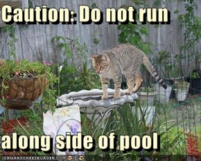 Caution: Do not run  along side of pool
