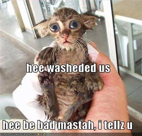 hee washeded us hee be bad mastah, i tellz u
