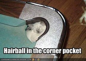 Hairball in the corner pocket