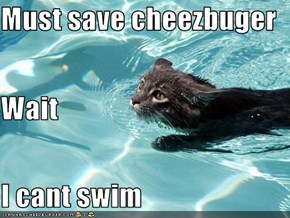 Must save cheezbuger Wait I cant swim