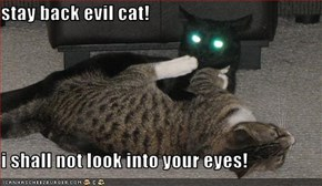 stay back evil cat!  i shall not look into your eyes!