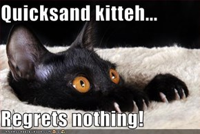 Quicksand kitteh...  Regrets nothing!