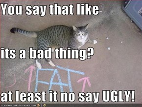 You say that like its a bad thing? at least it no say UGLY!
