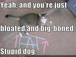Yeah, and you're just bloated and big-boned. Stupid dog.