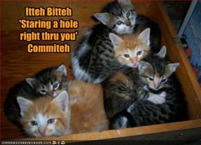 Itteh Bitteh 'Staring a hole right thru you' Commiteh