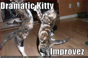 Dramatic Kitty  Improvez