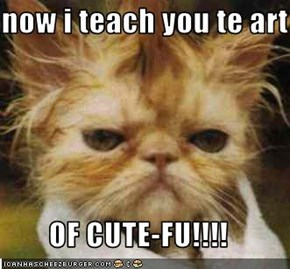 now i teach you te art  OF CUTE-FU!!!!