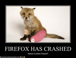 FIREFOX HAS CRASHED