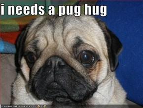 i needs a pug hug