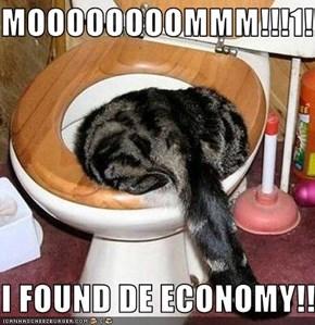 MOOOOOOOOMMM!!!1!!  I FOUND DE ECONOMY!!!1!!!