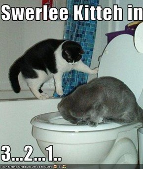 Swerlee Kitteh in  3...2...1..