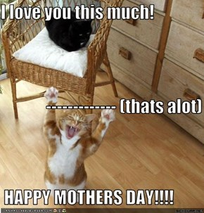 I love you this much!               ------------- (thats alot)  HAPPY MOTHERS DAY!!!!