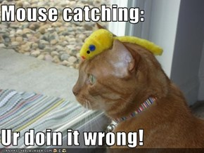 Mouse catching:  Ur doin it wrong!