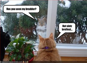 Has you seen my brudder?