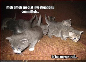 itteh bitteh special investigations committeh...