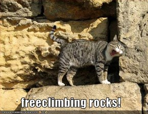 freeclimbing rocks!