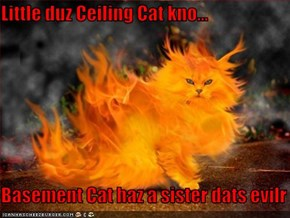 Little duz Ceiling Cat kno...  Basement Cat haz a sister dats evilr
