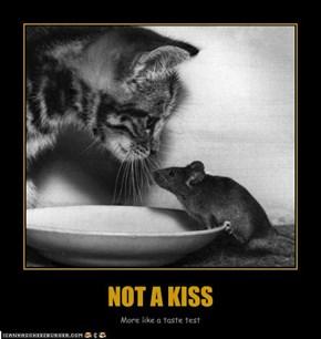 NOT A KISS