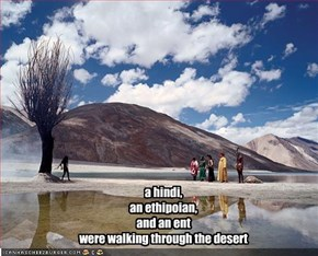 a hindi, an ethipoian, and an ent were walking through the desert