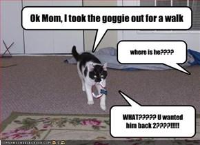 Ok Mom, I took the goggie out for a walk
