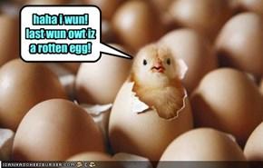 haha i wun! last wun owt iz a rotten egg!