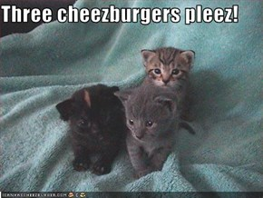 Three cheezburgers pleez!